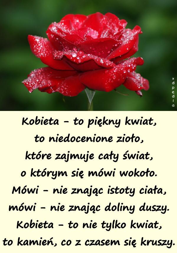 Kobieta To Piękny Kwiat To Niedocenione Xdpedia 11255