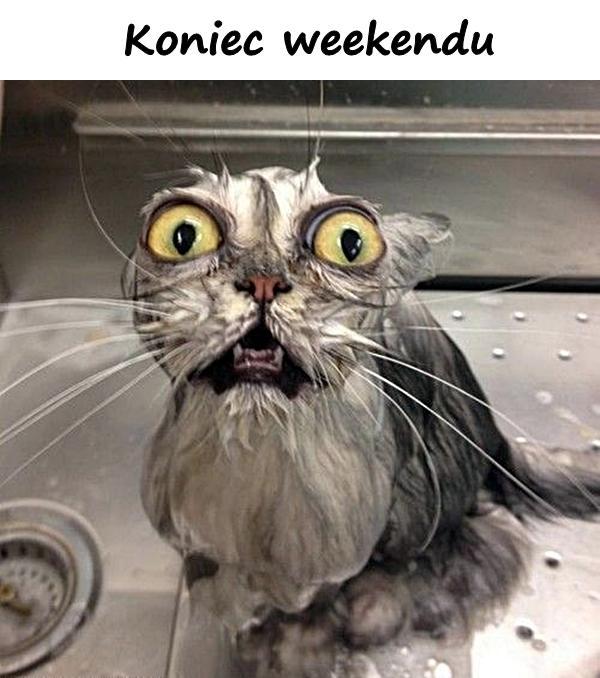 Koniec weekendu