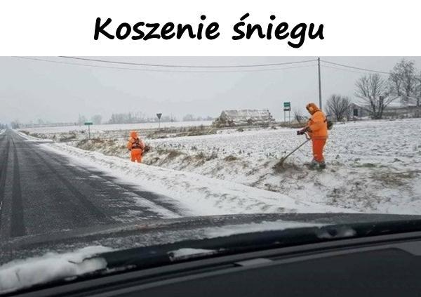 Koszenie śniegu