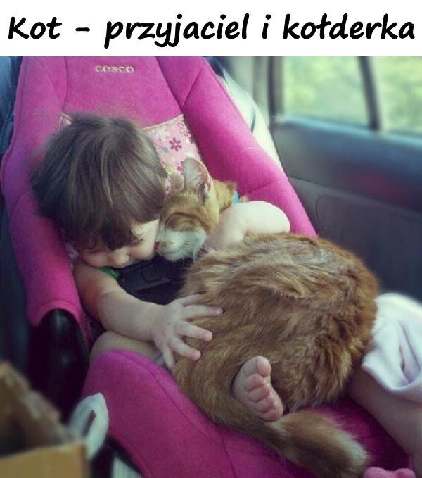 Kot - przyjaciel i kołderka