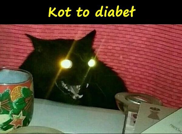 Kot to diabeł