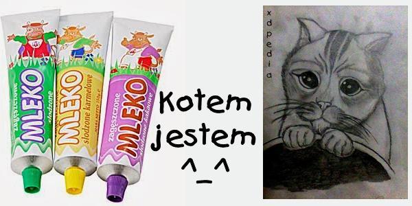 Kotem jestem ^_^