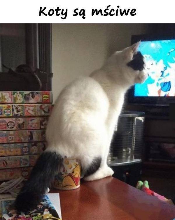 Koty są mściwe