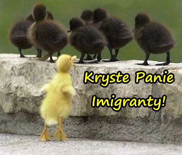 Kryste Panie Imigranty!
