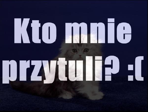 Kto mnie przytuli? :(