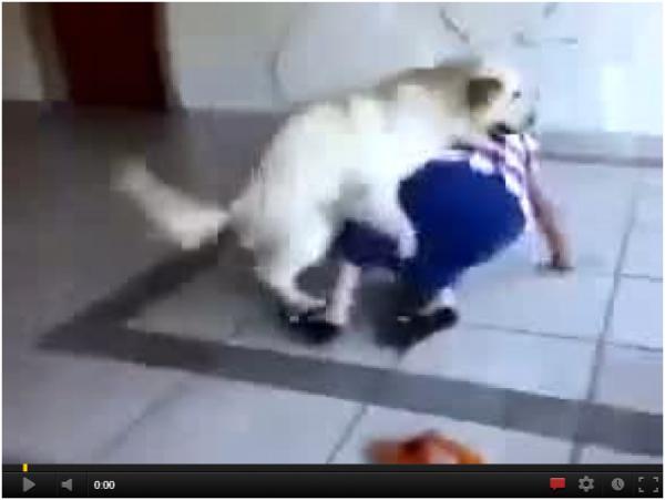 Ile to radości może poczynić starszej pani duży pies.