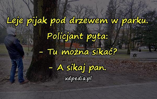 Leje pijak pod drzewem w parku. Policjant pyta: - Tu można sikać? - A sikaj pan.