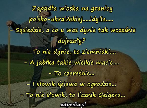Zapadła wioska na granicy polsko-ukraińskiej.....idylla..... - Sąsiedzie, a co u was dynie tak wcześnie dojrzały? - To nie dynie, to ziemniaki.... - A jabłka takie wielkie macie.... - To czereśnie... - I słowik śpiewa w ogrodzie... - To nie słowik, to licznik Geigera...