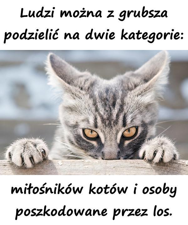 Ludzi można z grubsza podzielić na dwie kategorie: miłośników kotów i osoby poszkodowane przez los.