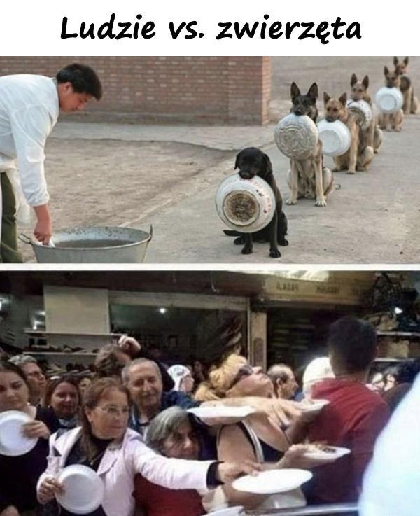 Ludzie vs. zwierzęta