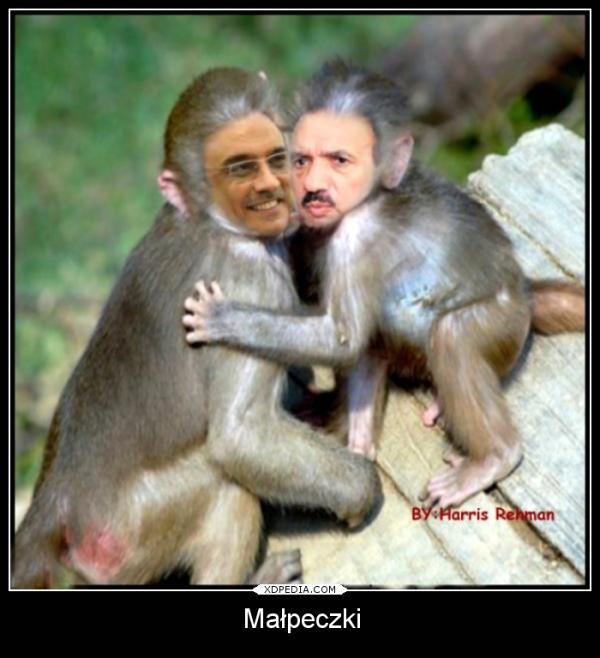 Małpeczki :P