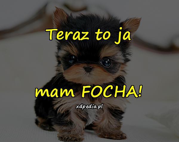 Teraz to ja mam FOCHA!