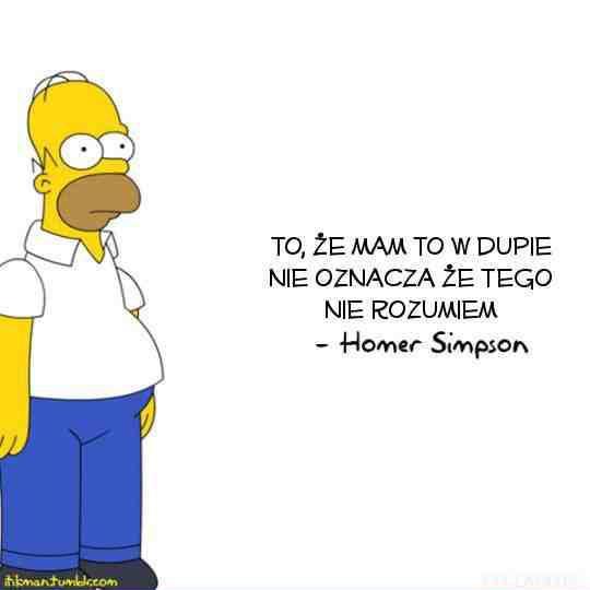 To, że mam to w dupie nie oznacza, że tego nie rozumiem - Homer Simpson
