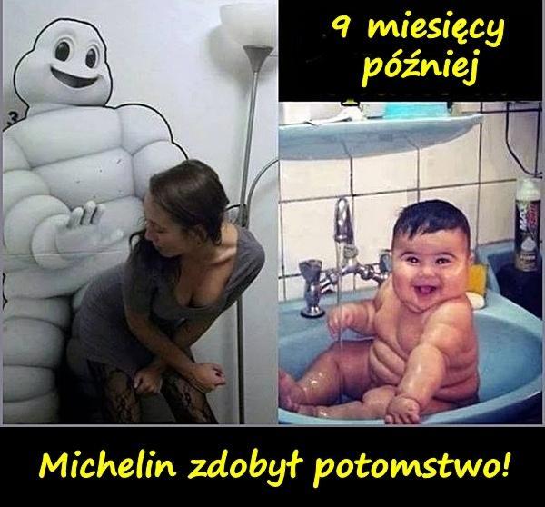 Michelin zdobył potomstwo!
