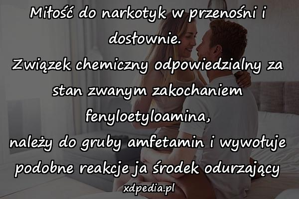Miłość do narkotyk w przenośni i dosłownie.  Związek chemiczny odpowiedzialny za stan zwanym zakochaniem fenyloetyloamina, należy do gruby amfetamin i wywołuje podobne reakcje ja środek odurzający
