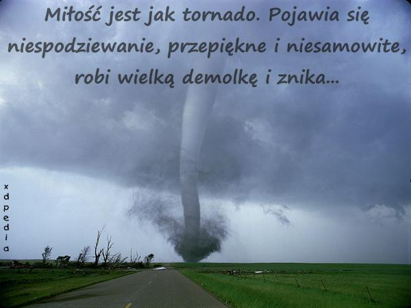 Miłość jest jak tornado. Pojawia się niespodziewanie, przepiękne i niesamowite, robi wielką demolkę i znika...