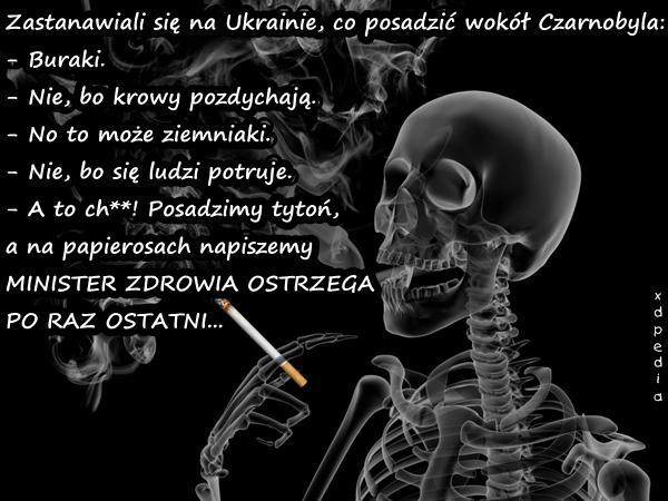 Zastanawiali się na Ukrainie, co posadzić wokół Czarnobyla: - Buraki. - Nie, bo krowy pozdychają. - No to może ziemniaki. - Nie, bo się ludzi potruje. - A to ch**! Posadzimy tytoń, a na papierosach napiszemy MINISTER ZDROWIA OSTRZEGA PO RAZ OSTATNI...