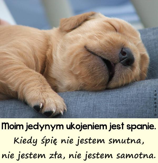 Moim jedynym ukojeniem jest spanie. Kiedy śpię nie jestem smutna, nie jestem zła, nie jestem samotna.