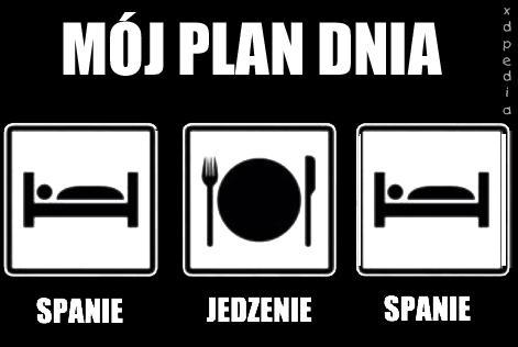 Mój plan dnia: spanie, jedzenie, spanie