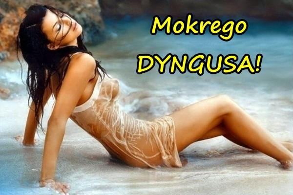 Mokrego DYNGUSA!