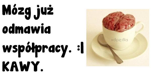 Mózg już odmawia współpracy. :| KAWY.