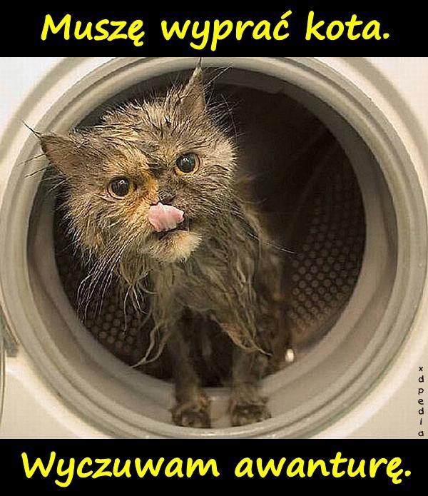 Muszę wyprać kota. Wyczuwam awanturę. Tagi: demotywator, kot, kociak, kotek, pranie, demotywatory, demot, awantura, koteł.