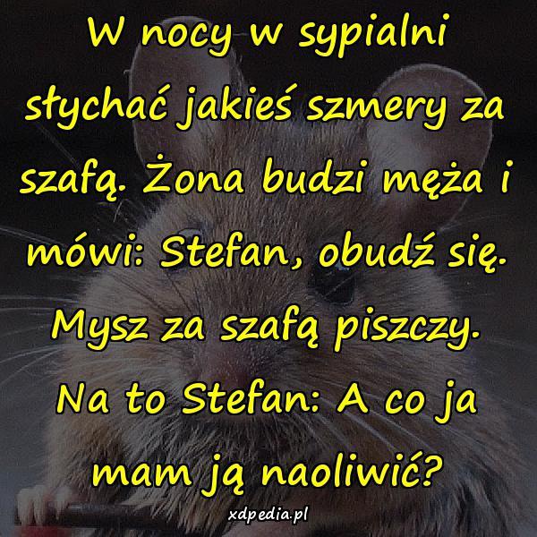 W nocy w sypialni słychać jakieś szmery za szafą. Żona budzi męża i mówi: Stefan, obudź się. Mysz za szafą piszczy. Na to Stefan: A co ja mam ją naoliwić?