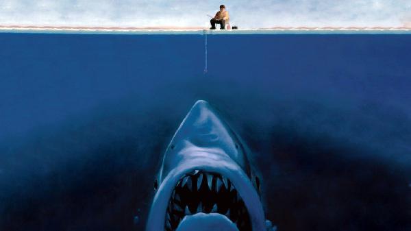 Na rybach nie wiadomo co złowisz Rekina też możesz Wszak on tez umie pływać...