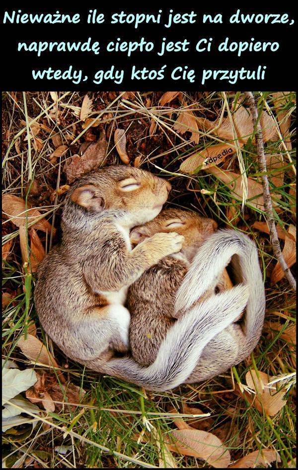 Nieważne ile stopni jest na dworze, naprawdę ciepło jest Ci dopiero wtedy, gdy ktoś Cię przytuli