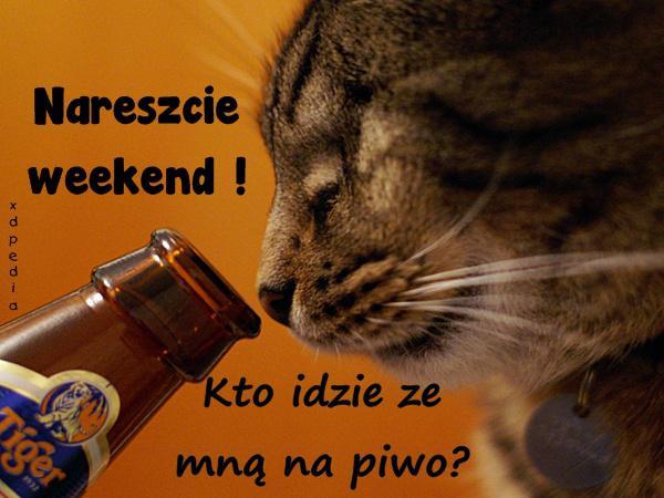 Nareszcie weekend! Kto idzie ze mną na piwo?