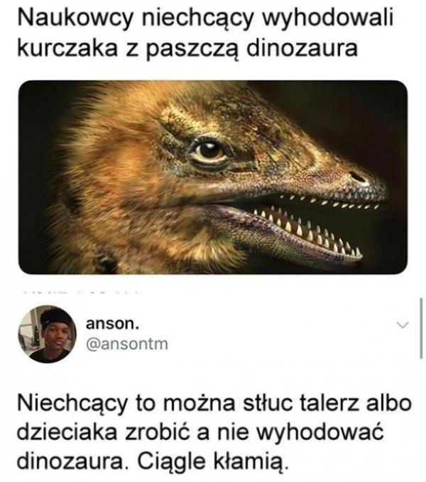 Naukowcy niechcący wyhodowali kurczaka z paszczą dinozaura. Niechcący to można stłuc talerz albo dzieciaka zrobić a nie dinozaura wyhodować. Ciągle kłamią.