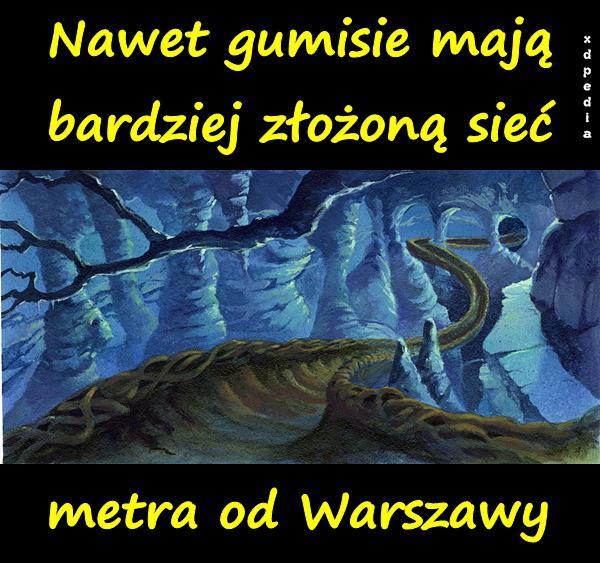 Nawet gumisie mają bardziej złożoną sieć metra od Warszawy.