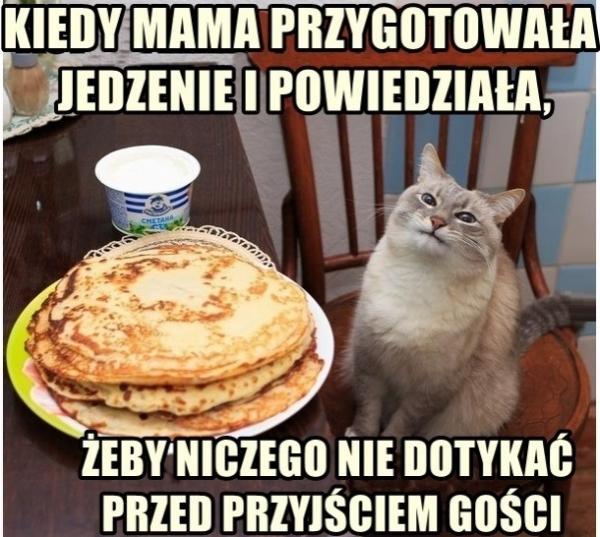 Kiedy mama przygotowała jedzenie i powiedziała żeby niczego nie dotykać przed przyjściem gości