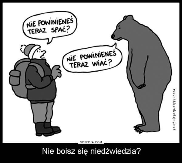 Nie boisz się niedźwiedzia? Wędrowiec: Nie powinieneś teraz spać? Niedźwiedź: Nie powinieneś teraz wiać?