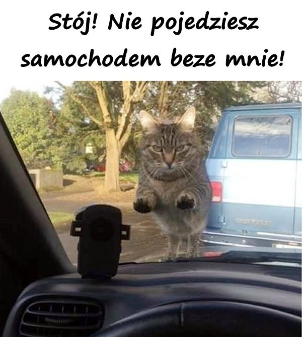 Stój! Nie pojedziesz samochodem beze mnie!