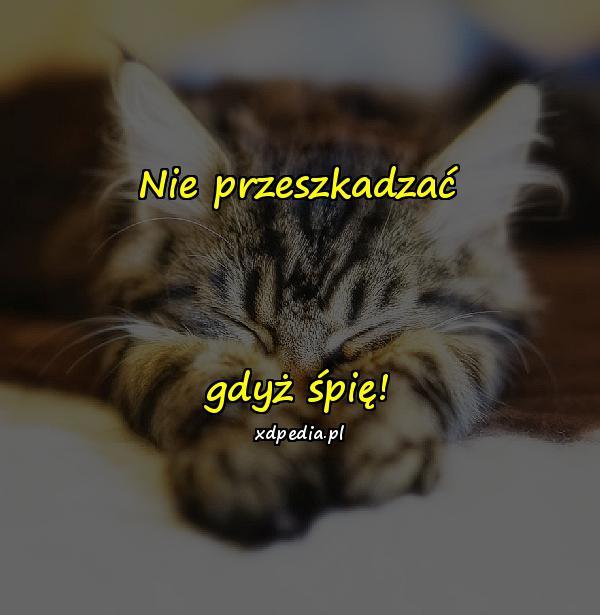 Nie przeszkadzać gdyż śpię!