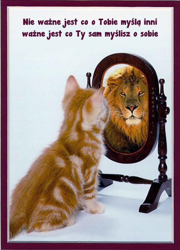Nie ważne jest co o Tobie myślą inni ważne jest co Ty sam myślisz o sobie