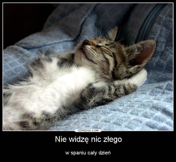 Nie widzę nic złego w spaniu cały dzień