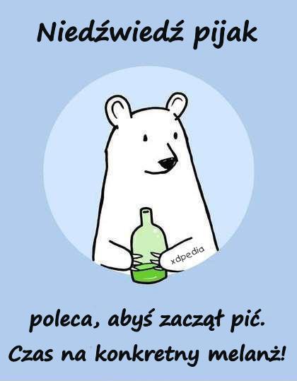 Niedźwiedź pijak poleca, abyś zaczął pić. Czas na konkretny melanż!