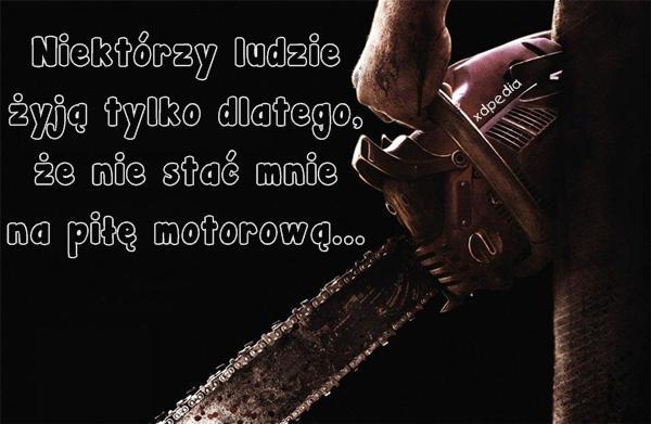 Niektórzy ludzie żyją tylko dlatego, że nie stać mnie na piłę motorową...