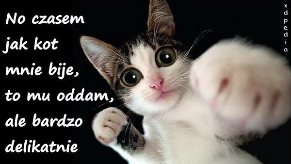 No czasem jak kot mnie bije, to mu oddam, ale bardzo delikatnie