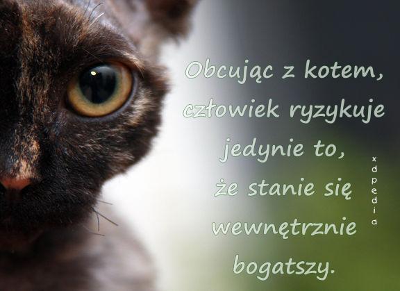 Obcując z kotem, człowiek ryzykuje jedynie to, że stanie się wewnętrznie bogatszy.