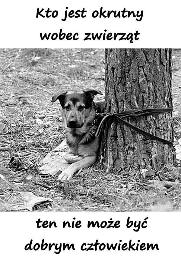 Kto jest okrutny wobec zwierząt, ten nie może być dobrym człowiekiem.
