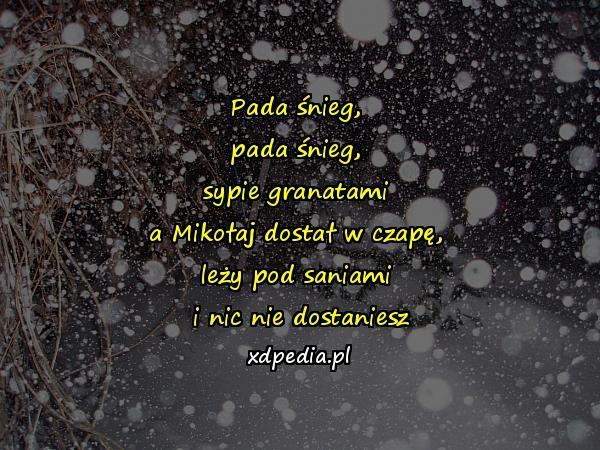 Pada śnieg Xdpedia 38418