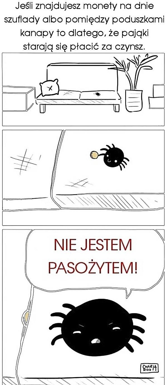 Jeśli znajdujesz monety na dnie szuflady, albo pomiędzy poduszkami kanapy to dlatego, że pająki starają się płacić za czynsz.