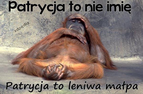 Patrycja to nie imię, Patrycja to leniwa małpa