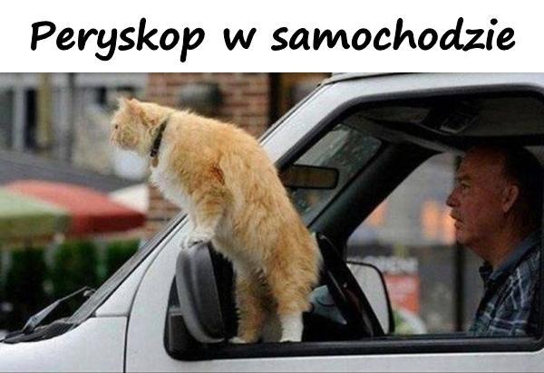 Peryskop w samochodzie