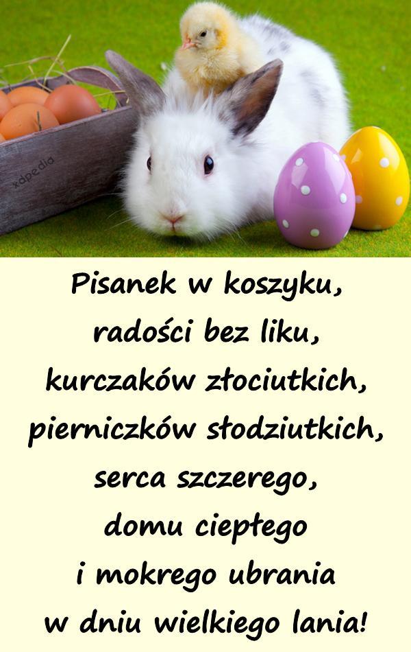 Wielkanoc Wiersz Demotywatory święta Wierszyki święto