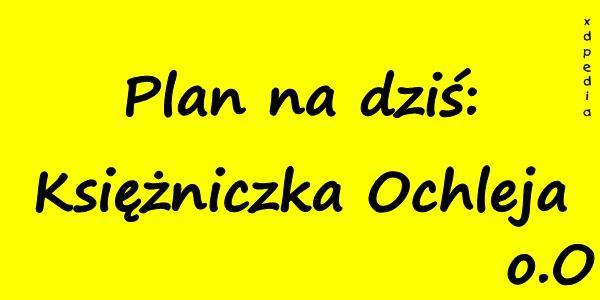 Plan na dziś: Księżniczka Ochleja Tagi: kwejk, memy, picie, mem, weekend, melanż, plany, chlanie, łikend, besty.
