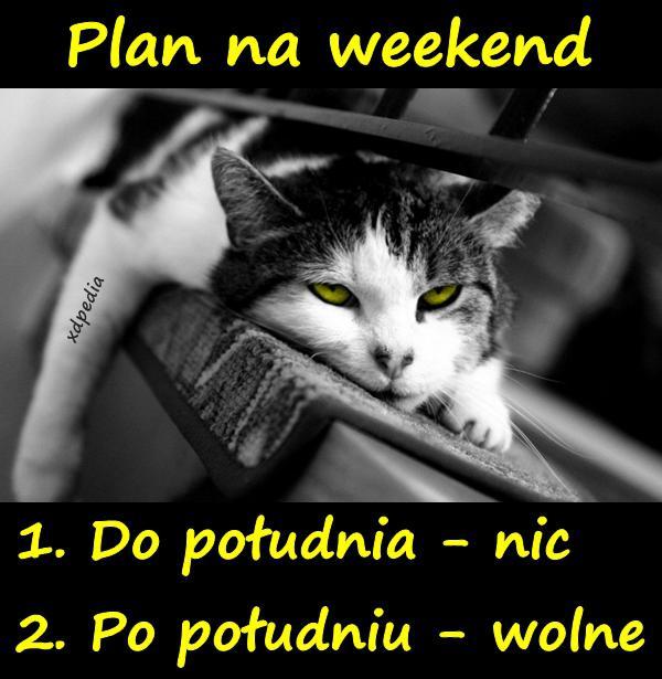 Plan na weekend 1. Do południa - nic 2. Po południu - wolne